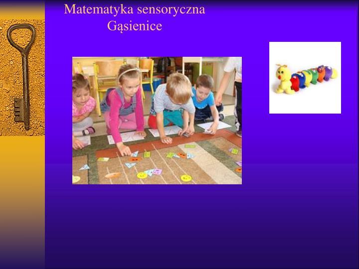 Matematyka sensoryczna g sienice