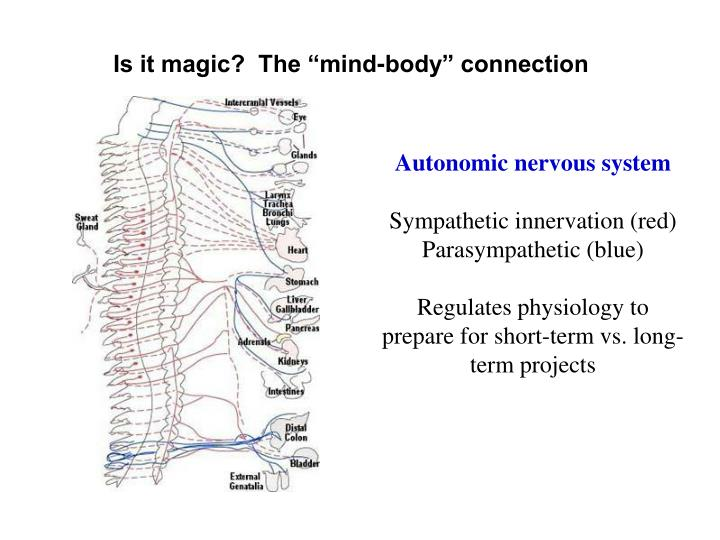"Is it magic?  The ""mind-body"" connection"