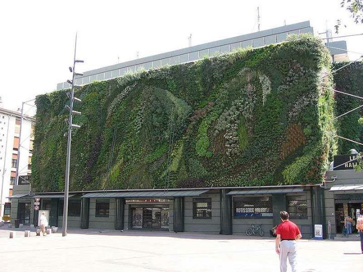 Jardines verticales de patrick blanc