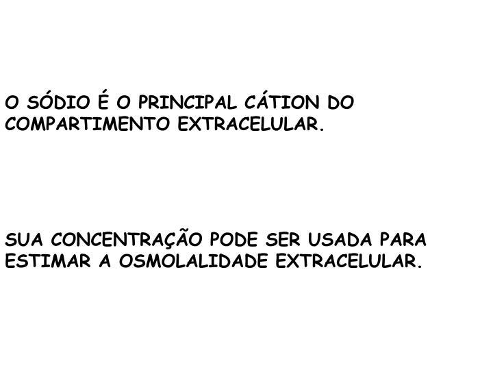 O SÓDIO É O PRINCIPAL CÁTION DO COMPARTIMENTO EXTRACELULAR.