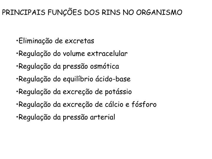 PRINCIPAIS FUNÇÕES DOS RINS NO ORGANISMO