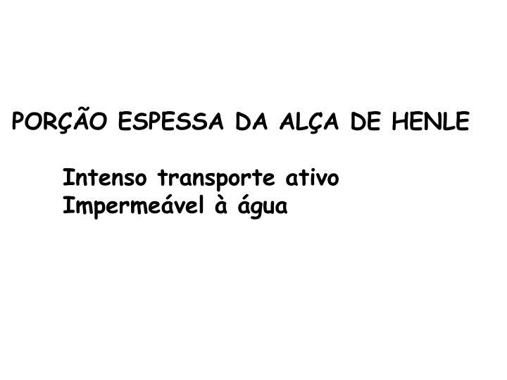 PORÇÃO ESPESSA DA ALÇA DE HENLE