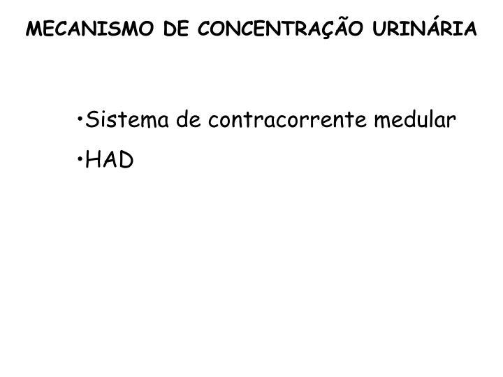 MECANISMO DE CONCENTRAÇÃO URINÁRIA