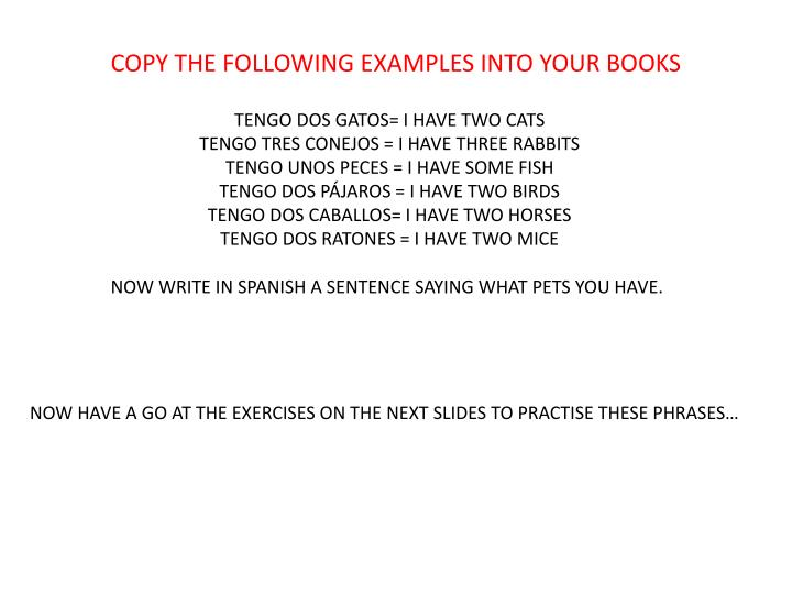 COPY THE FOLLOWING EXAMPLES INTO YOUR BOOKS