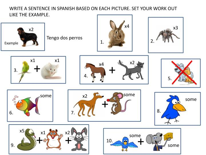 WRITE A SENTENCE IN SPANISH BASED ON EACH PICTURE. SET YOUR WORK OUT LIKE THE EXAMPLE.
