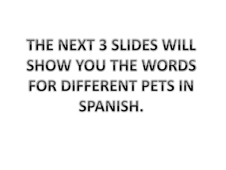 THE NEXT 3 SLIDES WILL SHOW YOU THE WORDS FOR DIFFERENT PETS IN SPANISH.