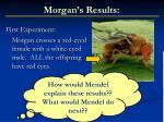 morgan s results