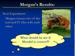 morgan s results1