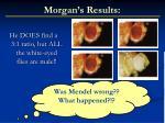 morgan s results2