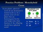practice problem monohybrid cross