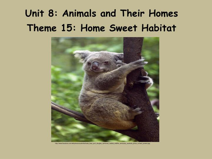 Unit 8 animals and their homes