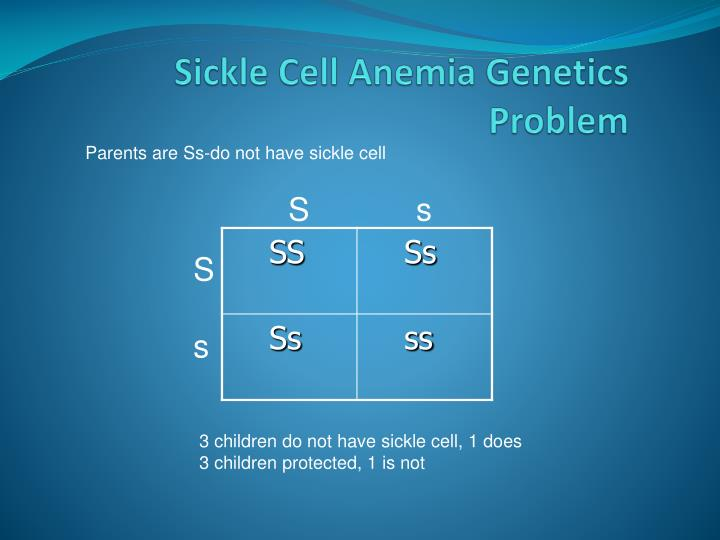 Sickle Cell Anemia Genetics Problem
