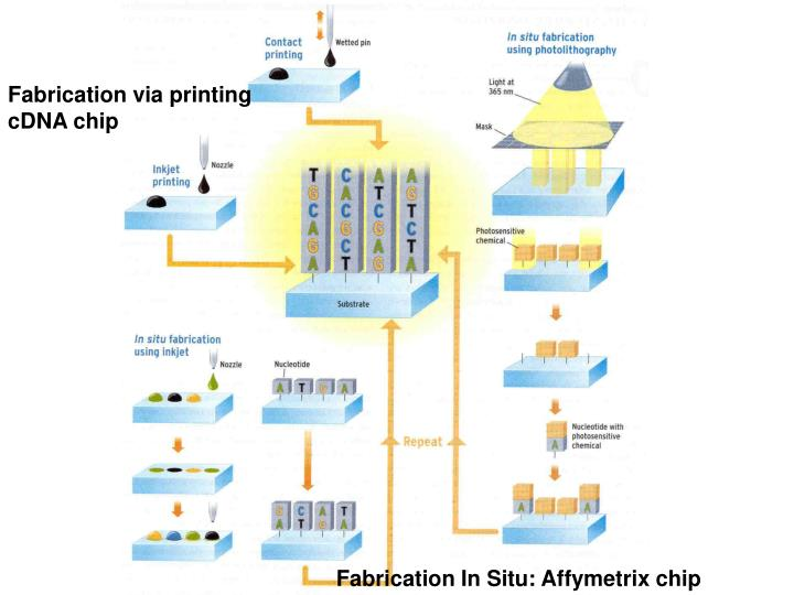 Fabrication via printing