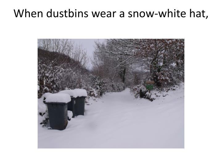 When dustbins wear a snow-white hat,