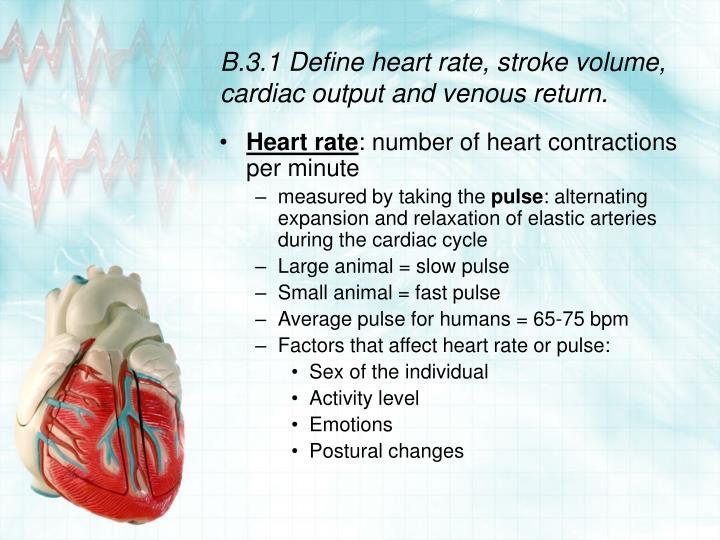 B 3 1 define heart rate stroke volume cardiac output and venous return