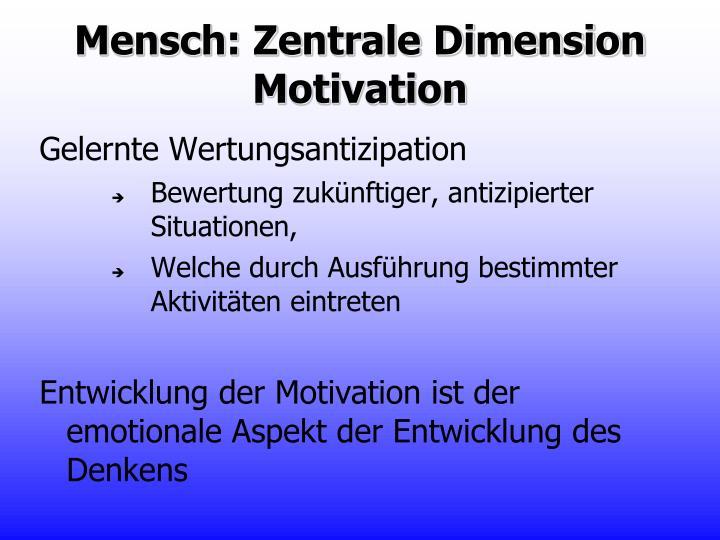 Mensch: Zentrale Dimension Motivation