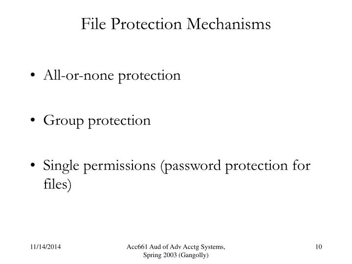 File Protection Mechanisms