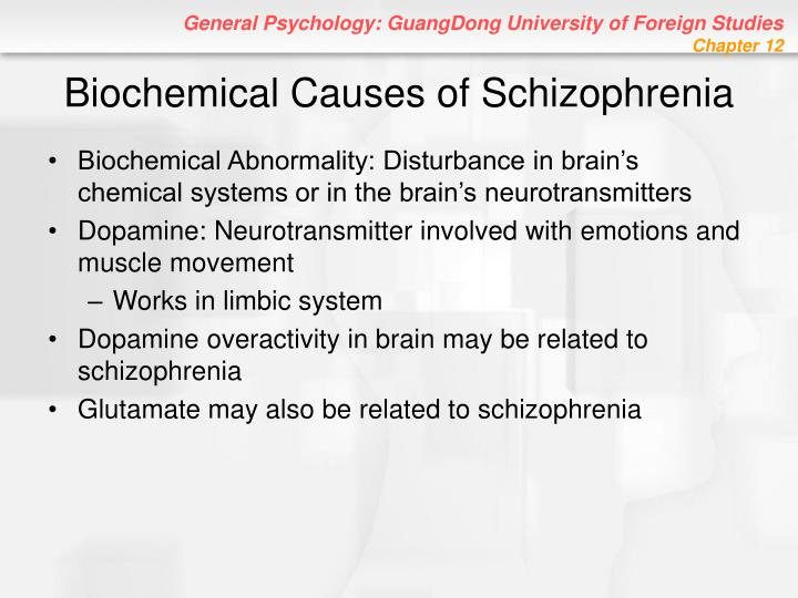Biochemical Causes of Schizophrenia