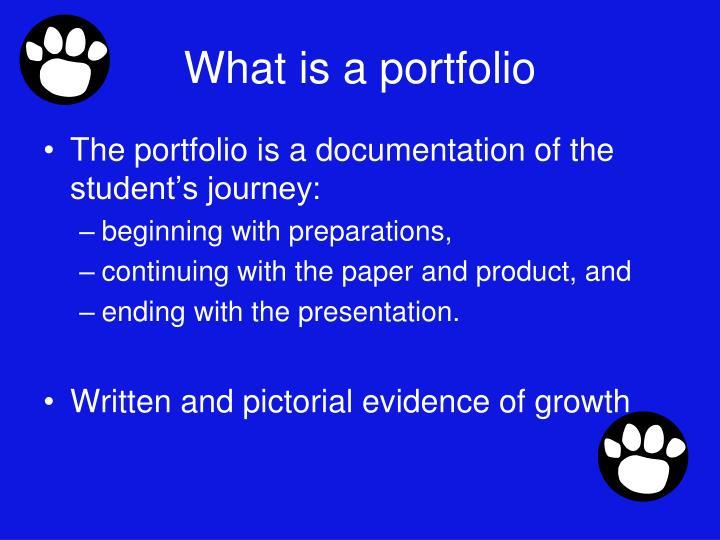 What is a portfolio