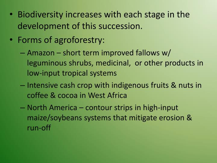 Biodiversity increases with each stage in the development of this succession.