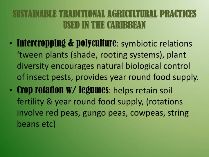 SUSTAINABLE TRADITIONAL AGRICULTURAL PRACTICES USED IN THE CARIBBEAN