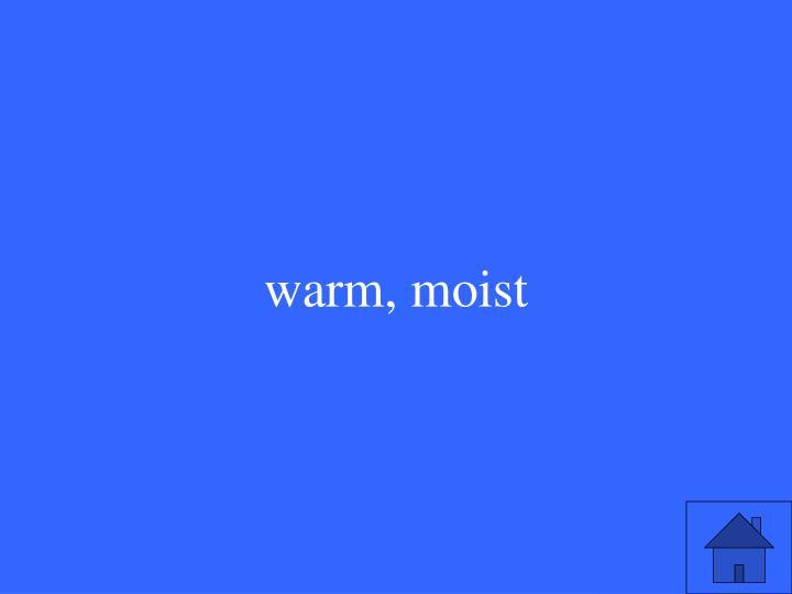 warm, moist