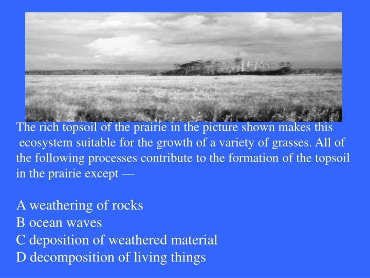 The rich topsoil of the prairie in the picture shown makes this
