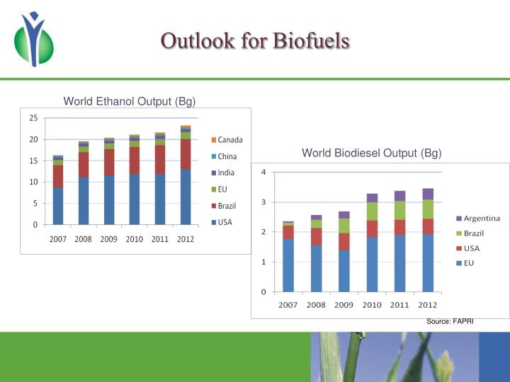 Outlook for biofuels