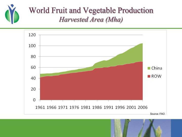 World Fruit and Vegetable Production