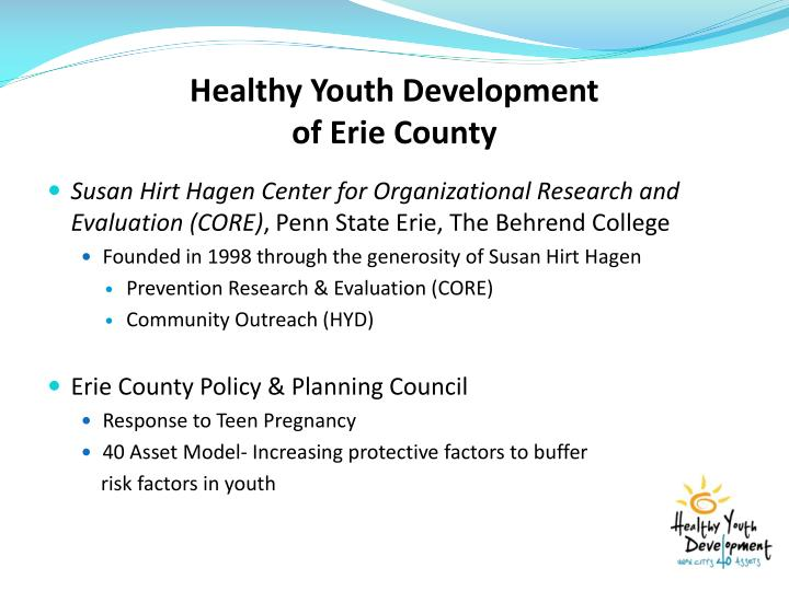 Healthy youth development of erie county