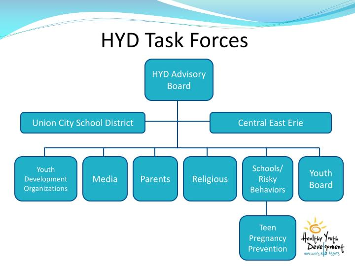 HYD Task Forces