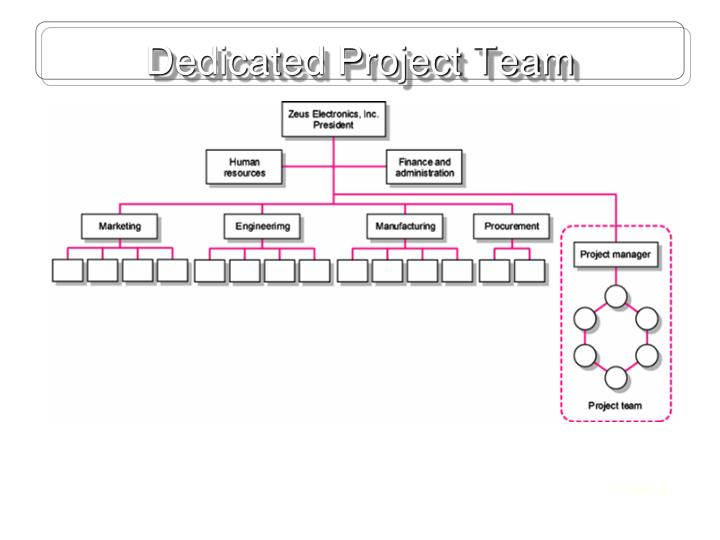 Dedicated Project Team