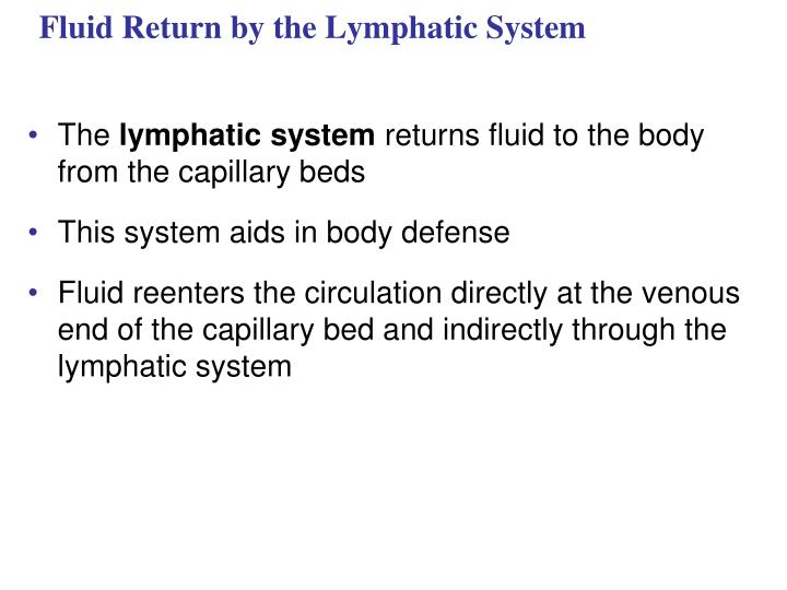 Fluid Return by the Lymphatic System