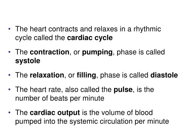 The heart contracts and relaxes in a rhythmic cycle called the