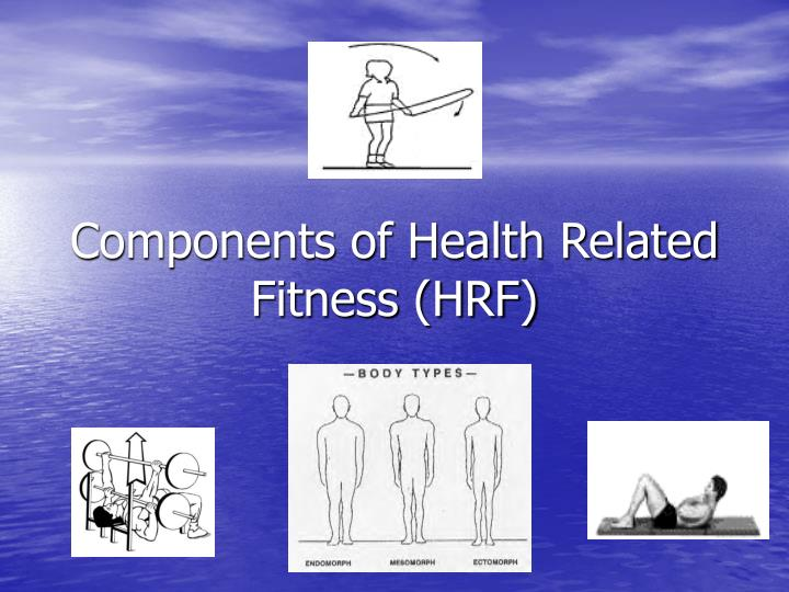 Components of health related fitness hrf