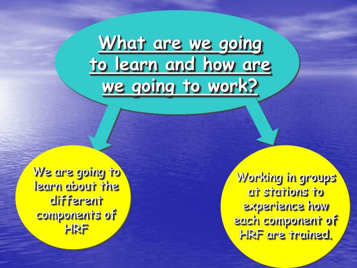 What are we going to learn and how are we going to work?