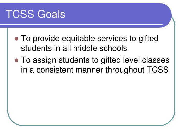 TCSS Goals