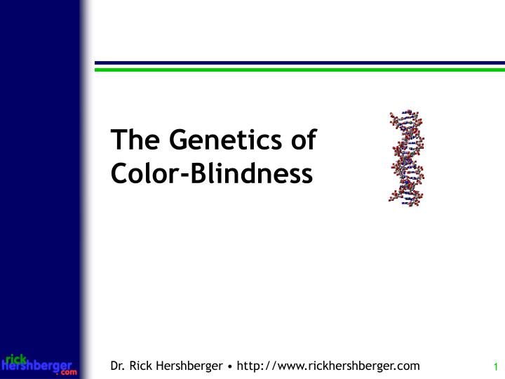 PPT The Genetics Of Color Blindness PowerPoint
