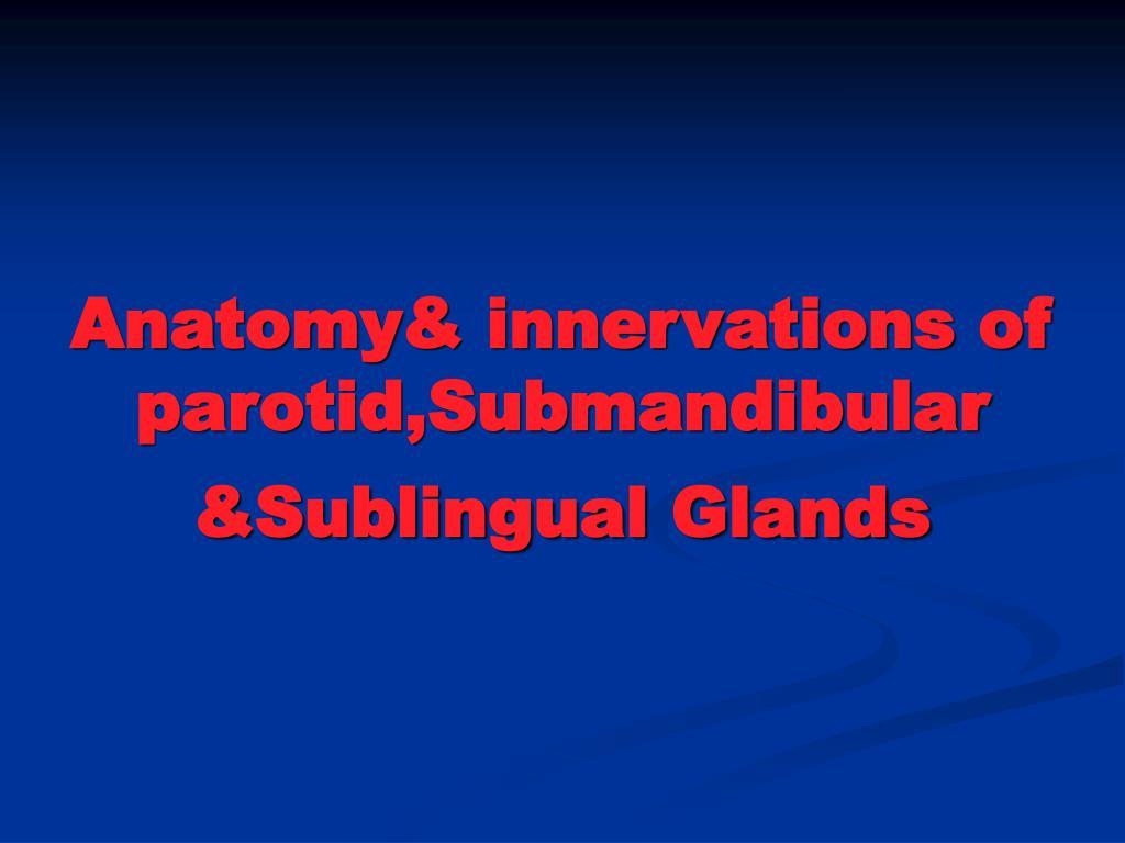 PPT - Anatomy& innervations of parotid,Submandibular &Sublingual ...