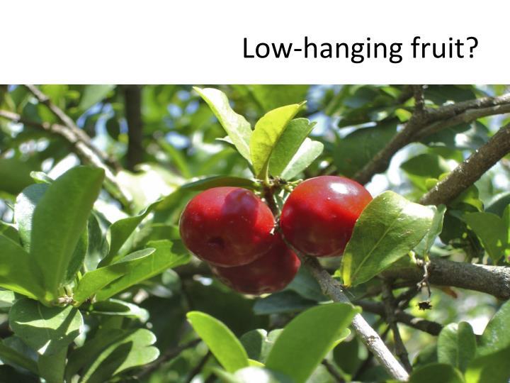 Low-hanging fruit?