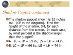 shadow puppet continued