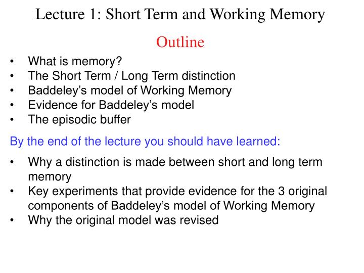 outline the working memory model
