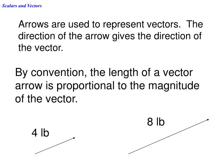 Scalars and vectors1