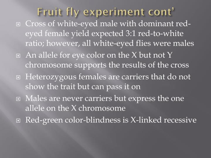 Fruit fly experiment cont'