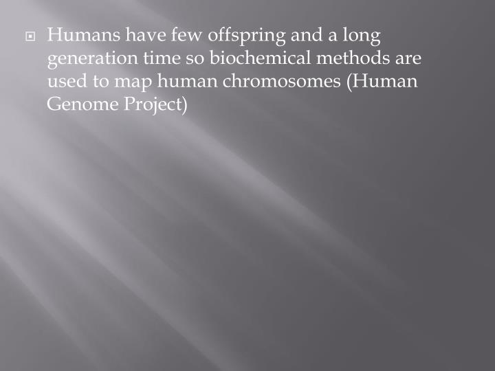 Humans have few offspring and a long generation time so biochemical methods are used to map human chromosomes (Human Genome Project)