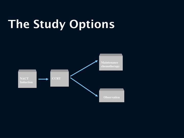 The Study Options