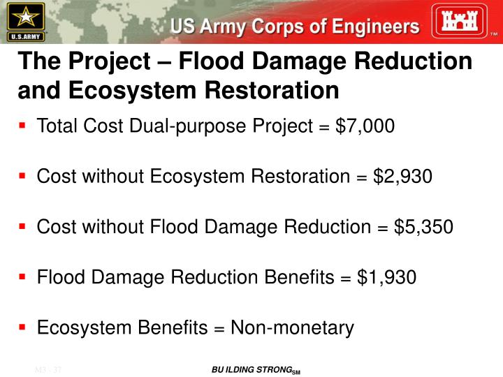 The Project – Flood Damage Reduction and Ecosystem Restoration