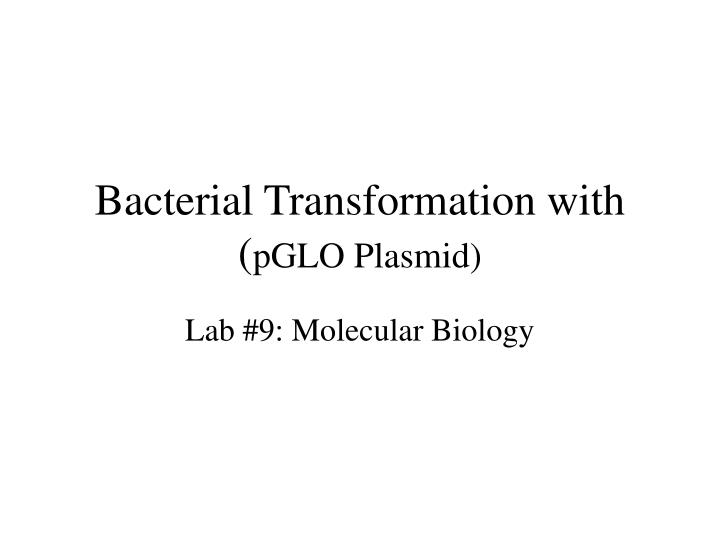 bacterial transformation using pglo involving x Bacterial transformation the purpose of this lab is to demonstrate visible changes in e coli bacteria that have been you will be using a plasmid called pglo.