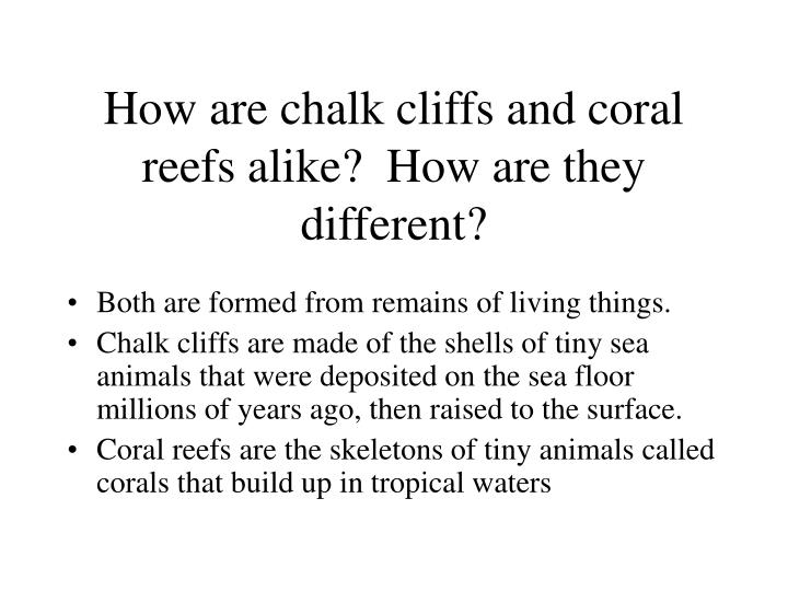 How are chalk cliffs and coral reefs alike?  How are they different?