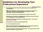 guidelines for developing your professional experience